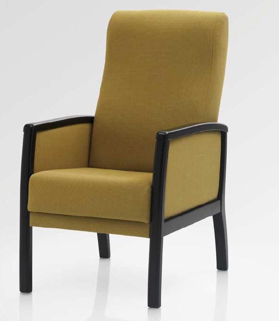 FAUTEUIL SALOME st marcellin